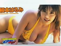 『ヤングマガジン 根本はるみ テレカ』新品