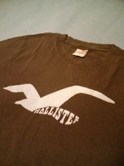 �����A!USA���n�{��!HOLLISTER-T��USED����!