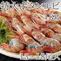 ボタンエビ1kg(約13〜18尾前後)/特大/天然/お刺身/ぼたんえび