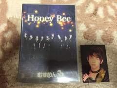 Honey Bee �ނ��߂�B�g���J�t��