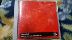 WANDS(ワンズ) DVD BEST OF WANDS VIDEO HISTORY