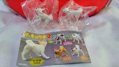 【マーキング犬 2】《チワワ(ホワイト)》2コセット