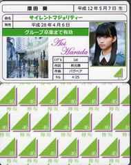 原田葵 サイレントマジョリティー 免許証カード 欅坂46
