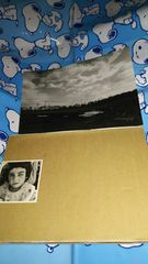 SOPHIA◆ALIVE◆ツア-パンフ◆CD付◆1998年◆松岡充◆