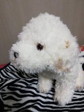ミックス犬 ★ ぬいぐるみ