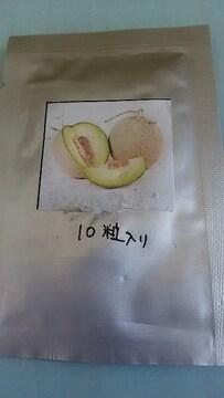 メロン種子
