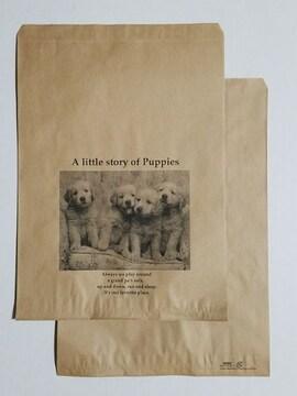 R20サイズ平袋☆リトルストーリー10枚☆B5が余裕で入る紙袋