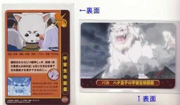 銀魂ZZ★トレカ ハタ皇子の宇宙生物図鑑カード Z-091 定春