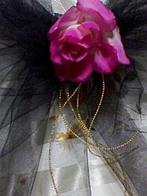 送込〓ドレスアップ〓飾りリボン〓黒  大人用〓 < 女性ファッションの