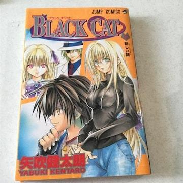 BLACK CAT  ブラックキャット12