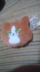 猫のぽんた【フェイスがまぐち】