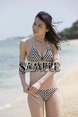 【写真】L判: ℃-ute/矢島舞美203