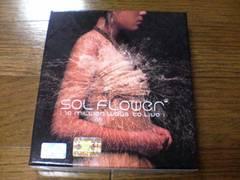 SOL FLOWER CD 1集 韓国K-POP
