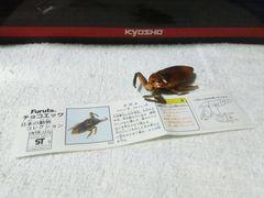 フルタ 日本の動物2 水中のギャング タガメ