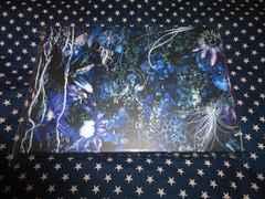 SUGIZO『ONENESS M』限定ボックス2CD 美品 (LUNA SEA, The FLARE