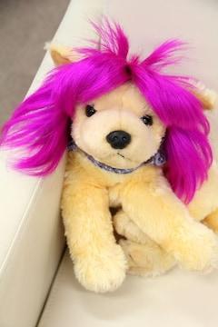 SALE【オリジナル】Wigs2you☆P-043☆犬☆猫☆ペットウィッグ