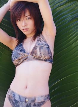 ★釈由美子さん★ 高画質L判フォト(生写真) 300枚