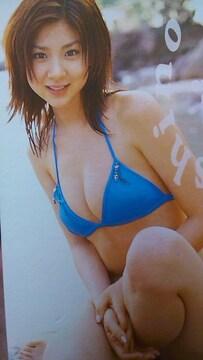 ほしのあき松金洋子トランプヤングチャンピオン購入