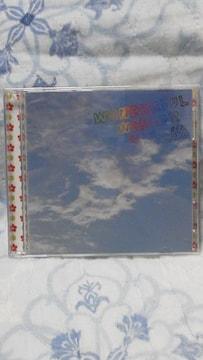 国内正規品Wonderful World!!初回限定盤A(特典DVD付オマケ付