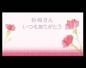 母の日ギフトカード◆花カーネーション お母さんありがとう 1枚