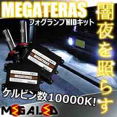 Mオク】ステップワゴンRF1/2系後期/フォグランプHIDキット/H1/10000K