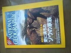 ナショナルジオグラフィック日本版2008年9月号/ゾウの家族