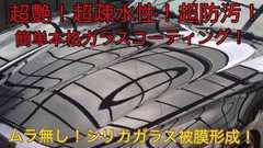 高級車基準ガラスコーティング剤250ml(超艶!超疎水性!)