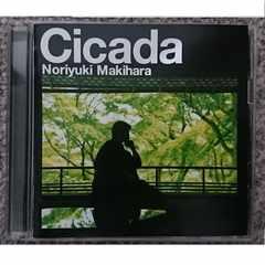 KF 槇原敬之 cicada 初回限定盤