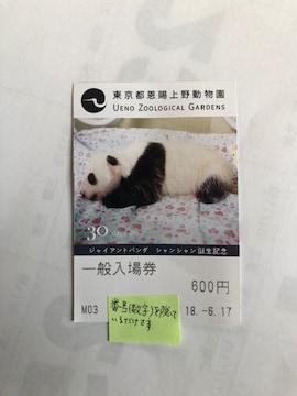 上野動物園シャンシャン誕生記念30日齢チケット一般入場券
