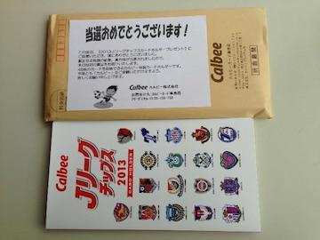 13カルビ-/非売品カ-ドホルダー【未使用】