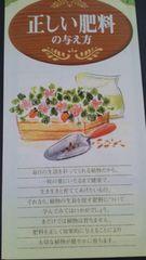 家庭菜園、正しい肥料の与え方冊子