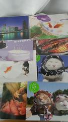 ★かご猫シロ・・・他ポストカード全9枚セット★1350円★