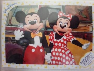 オマケ写真つき☆限定フレームディズニーランドミッキーミニーミキミニスペシャルフォトスペフォTDL