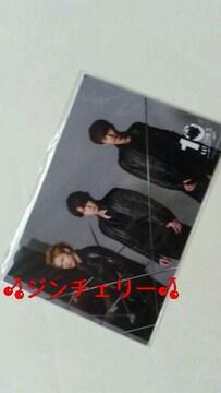 KAT-TUN 10TH ANNIVERSARY LIVE TOUR 10Ks!オリジナルフォト 亀梨和也